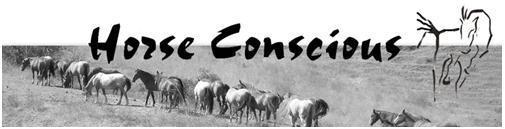 HorseConsciousLogo