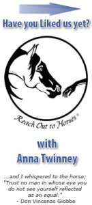 www.facebook.com/ReachOutToHorses