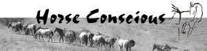 horseconscious