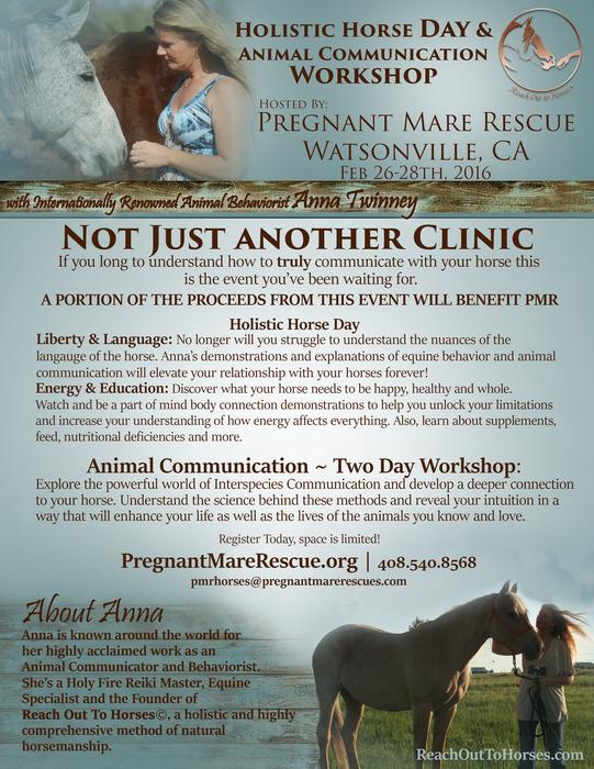 Pregnant mare rescue clinic