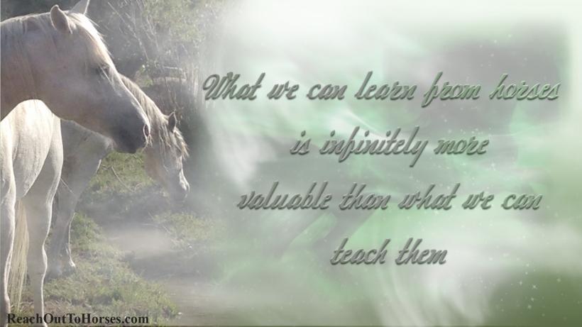 teachthem