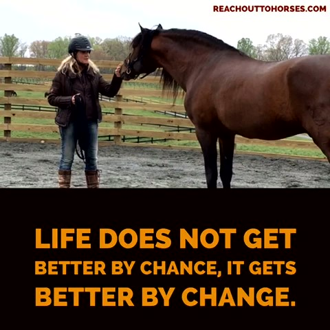 Better by change not by chance_Moment